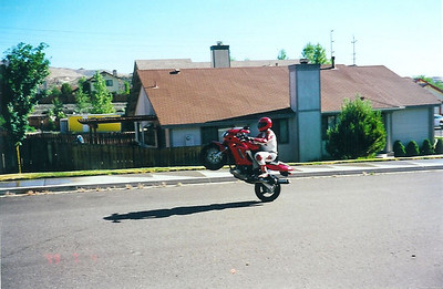 superhawk wheelie