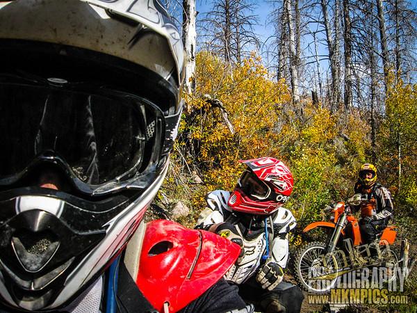 Grizzly Helena trail 076