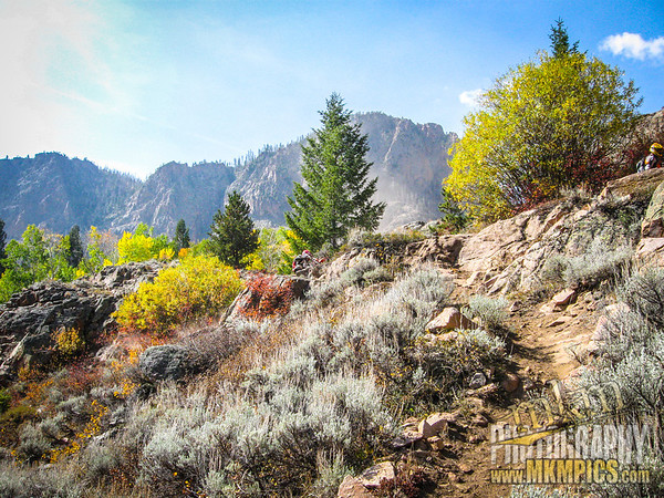Grizzly Helena trail 018