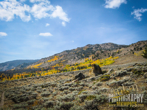 Grizzly Helena trail 027