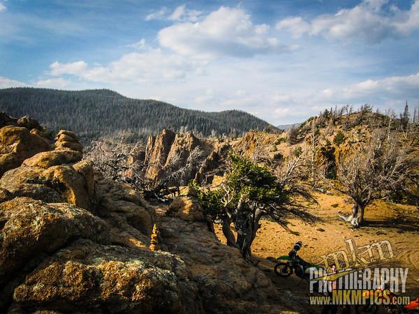 Grizzly Helena trail 110
