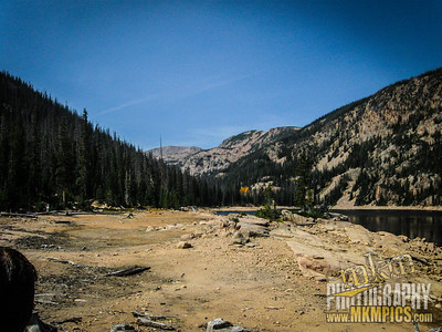 Grizzly Helena trail 069