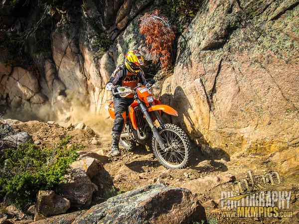 Grizzly Helena trail 083