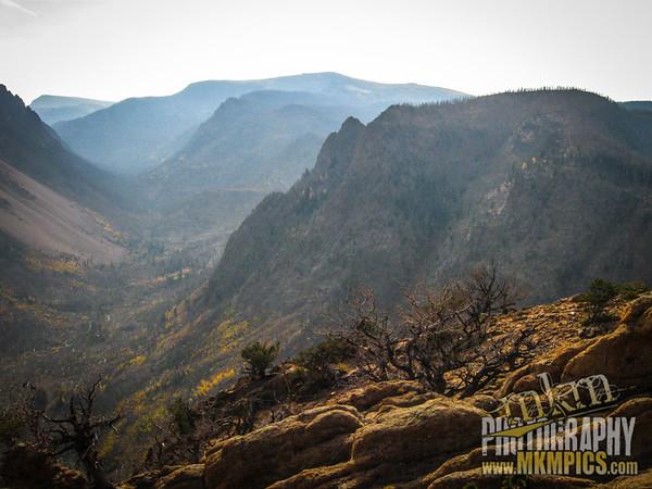 Grizzly Helena trail 108