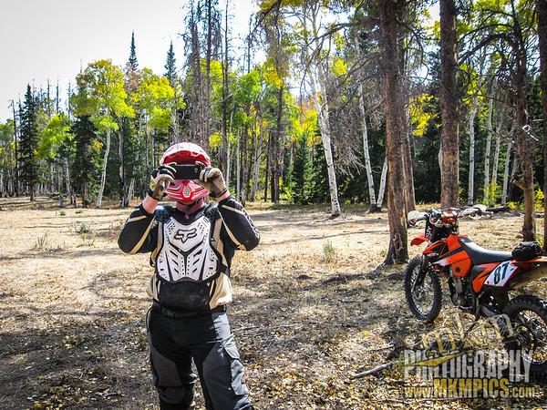 Grizzly Helena trail 028