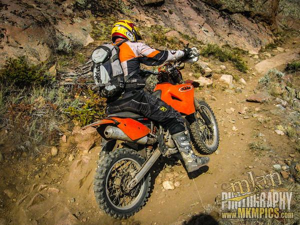 Grizzly Helena trail 085