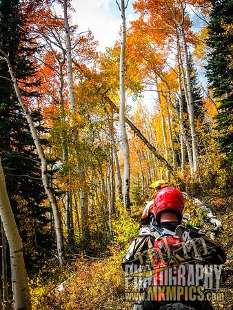 Grizzly Helena trail 038