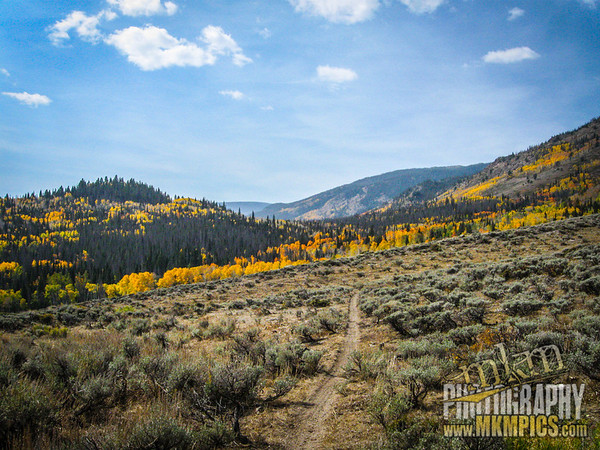 Grizzly Helena trail 025