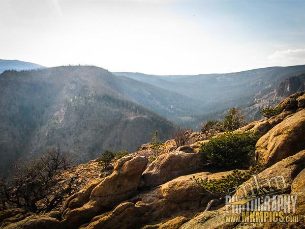 Grizzly Helena trail 107