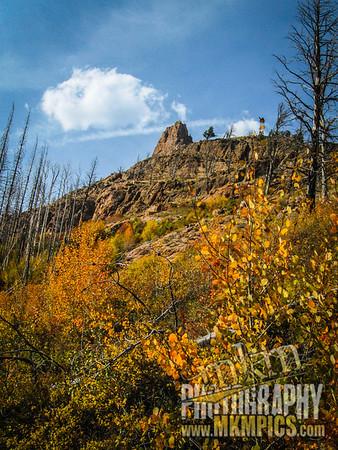 Grizzly Helena trail 077