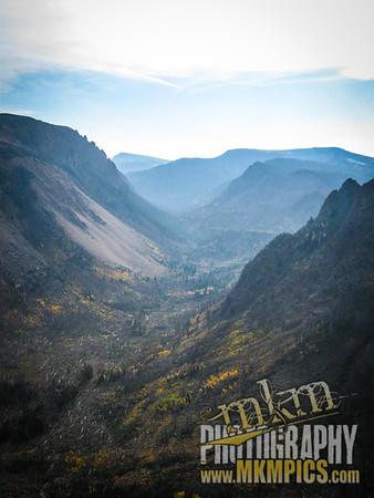 Grizzly Helena trail 097