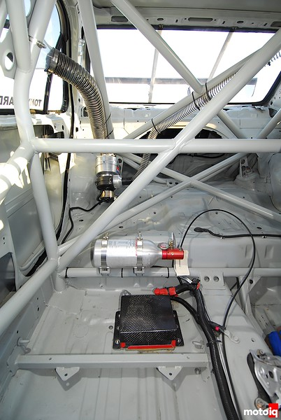 Dog II interior