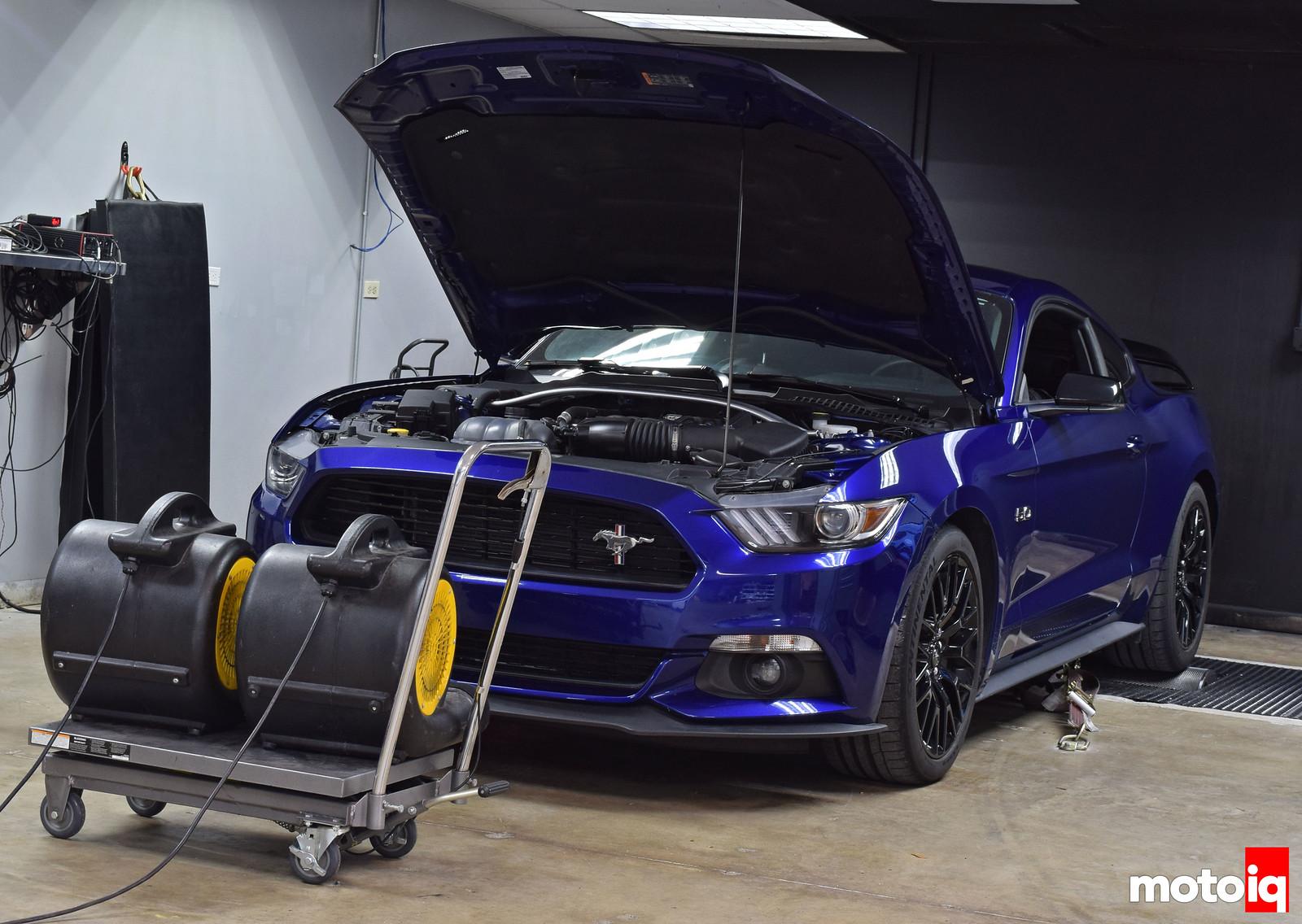 Palm Beach Dyno Mustang GT