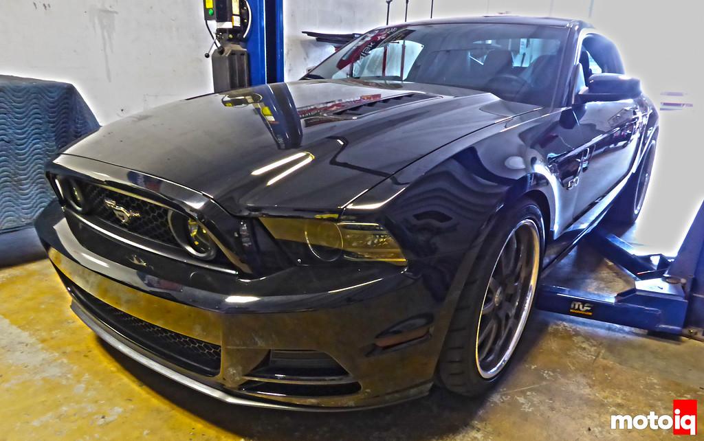 Black PBH Mustang