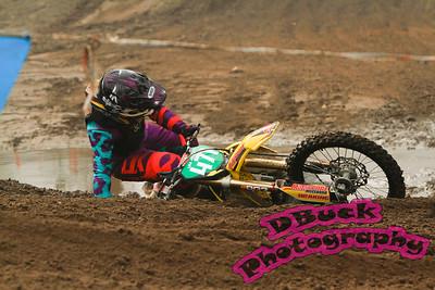 DBuck--2015-211