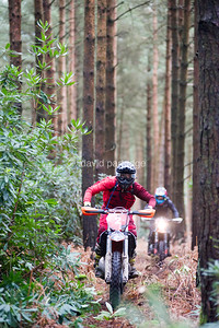 Dorset Enduro Winter Warmer Series Rd 4, Moreton Forest, Dorset, ENGLAND, UK