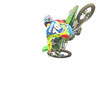 archer_whip_rpmx_kroc_sunday_2016_089A