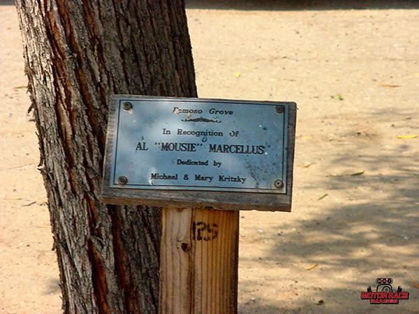Mousie's Tree @ Famoso Grove