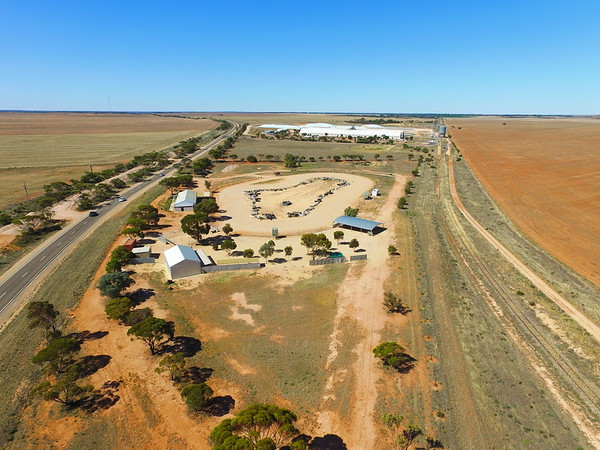 Repairs to Loxton track
