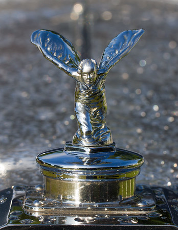 Mascots and Hood Ornament