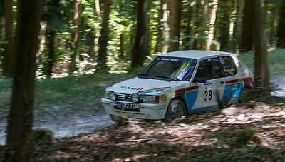 1990 - Peugeot 205 Rallye