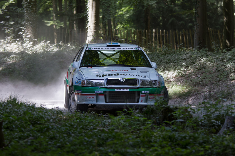 2019 Skoda Octavia WRC