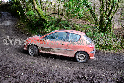 D50_9968 -  No. 133, Richard Feather and Andy Westlake:  Class 1 Peugeot 206