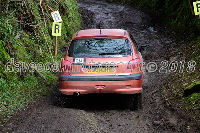 D50_9969 -  No. 133, Richard Feather and Andy Westlake:  Class 1 Peugeot 206