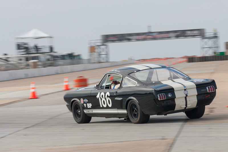 1966 Shelby Mustang GT350 - Michael Parsons