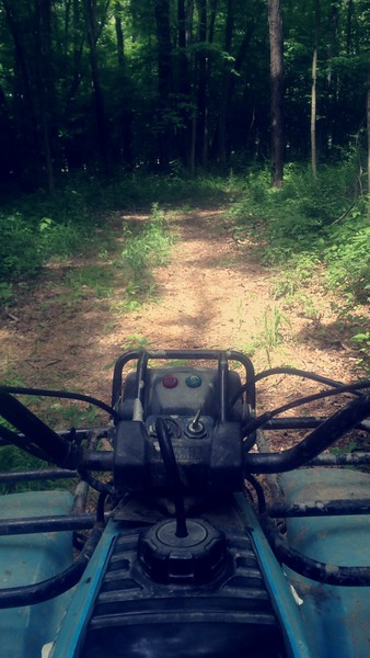 Riding through the Trails