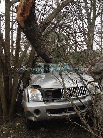 M-LFD Responds To Second Car vs. Tree In Two Days