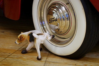 A little doggy, disrespecting a Ford whitewall tire. Branson Auto Museum