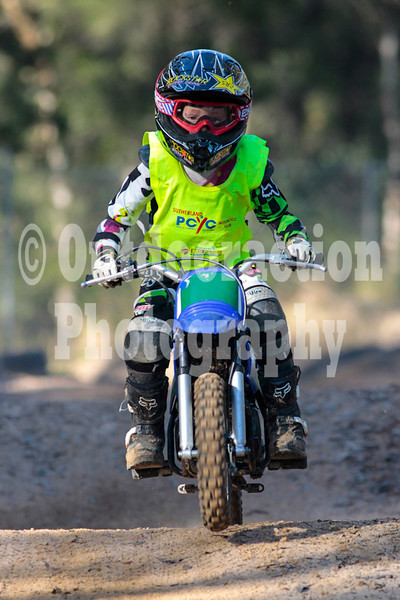 PenrithPCYC_Nippers-0136