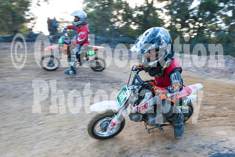 PenrithPCYC_Nippers-0365