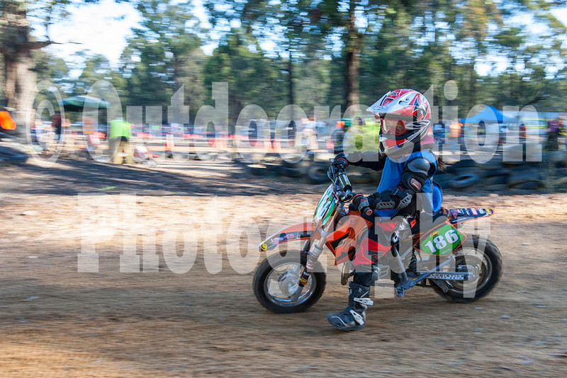 PenrithPCYC_Nippers-0349