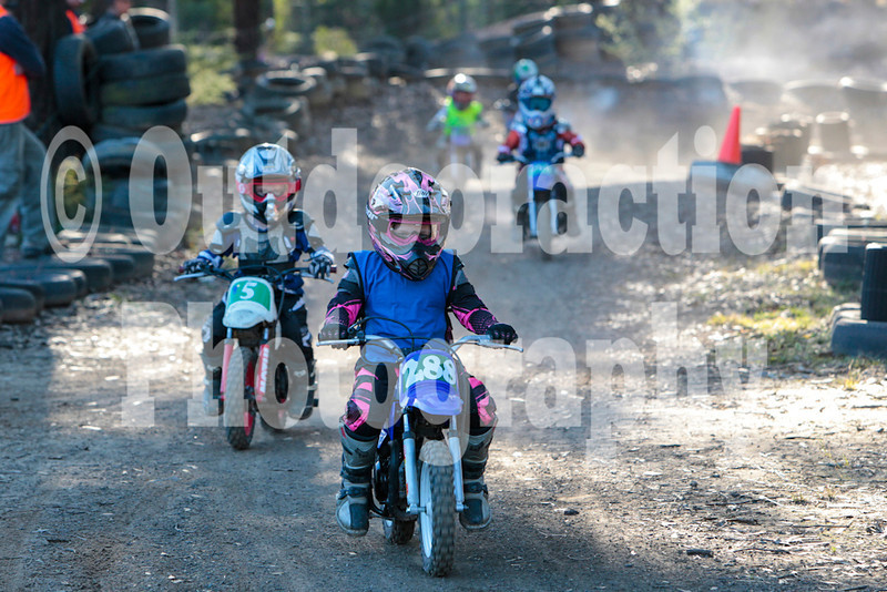 PenrithPCYC_Nippers-0319