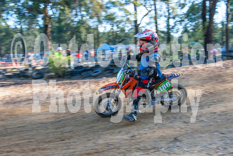 PenrithPCYC_Nippers-0347