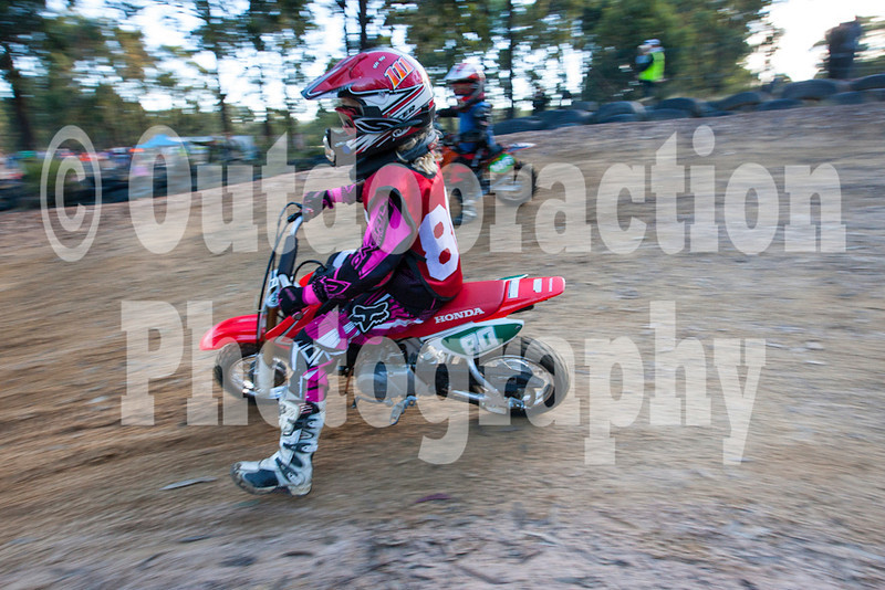 PenrithPCYC_Nippers-0364