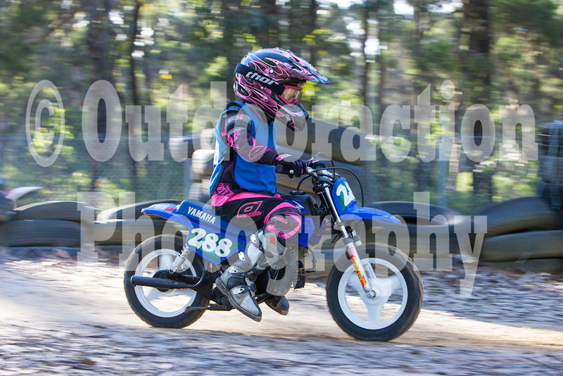 PenrithPCYC_Nippers-0304