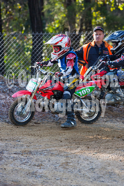 PenrithPCYC_Nippers-0174