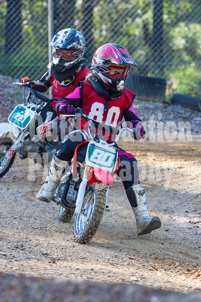 PenrithPCYC_Nippers-0183