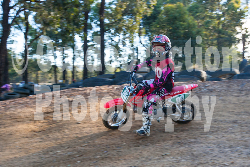 PenrithPCYC_Nippers-0350