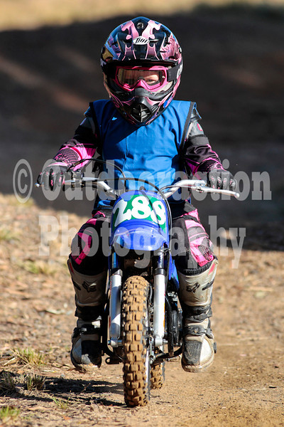 PenrithPCYC_Nippers-0050