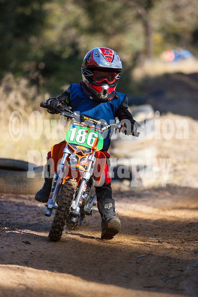 PenrithPCYC_Nippers-0053
