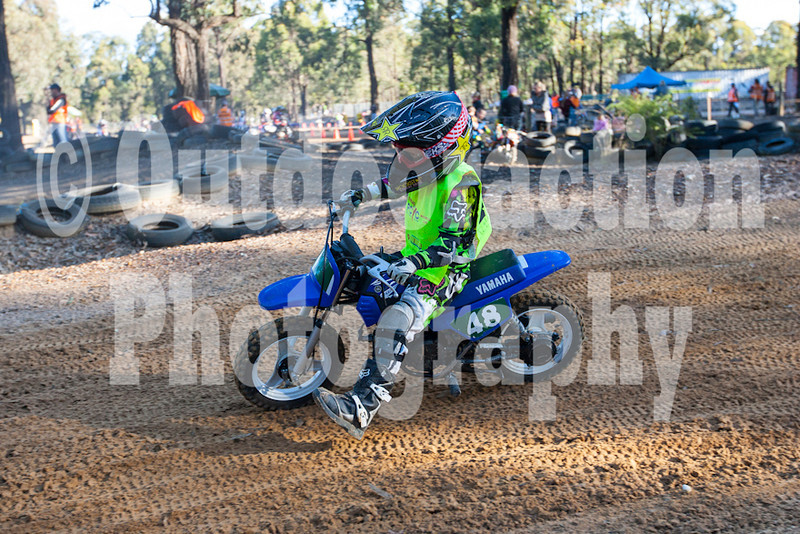 PenrithPCYC_Nippers-0404