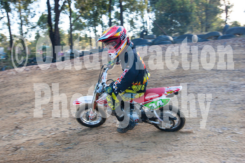 PenrithPCYC_Nippers-0357