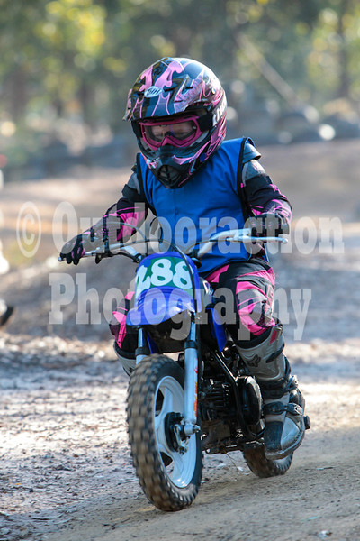 PenrithPCYC_Nippers-0338