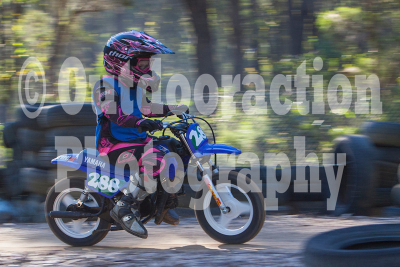 PenrithPCYC_Nippers-0286