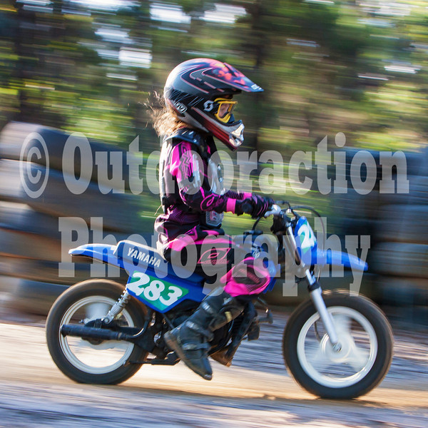 PenrithPCYC_Nippers-0283
