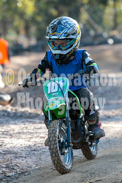 PenrithPCYC_Nippers-0339